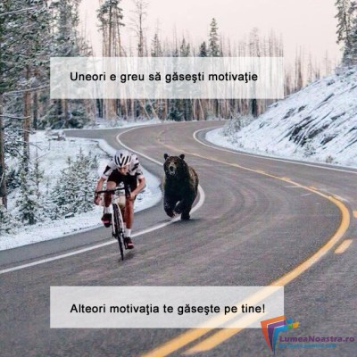 motivatie-2-biciclisti-urmariti-de-animale-400x400