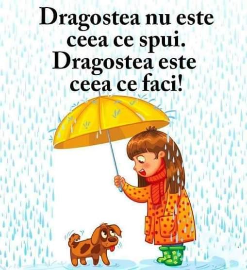 FB_IMG_1463511385492